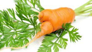 Krumme Karotte