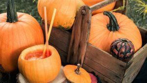 Halloween Bowle im Kürbis